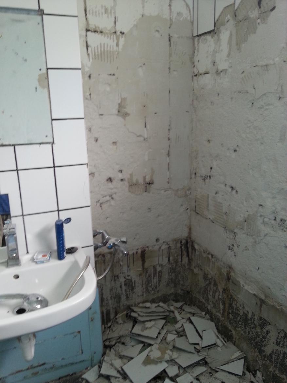 Badrenovierung   Installationsschacht verkleiden