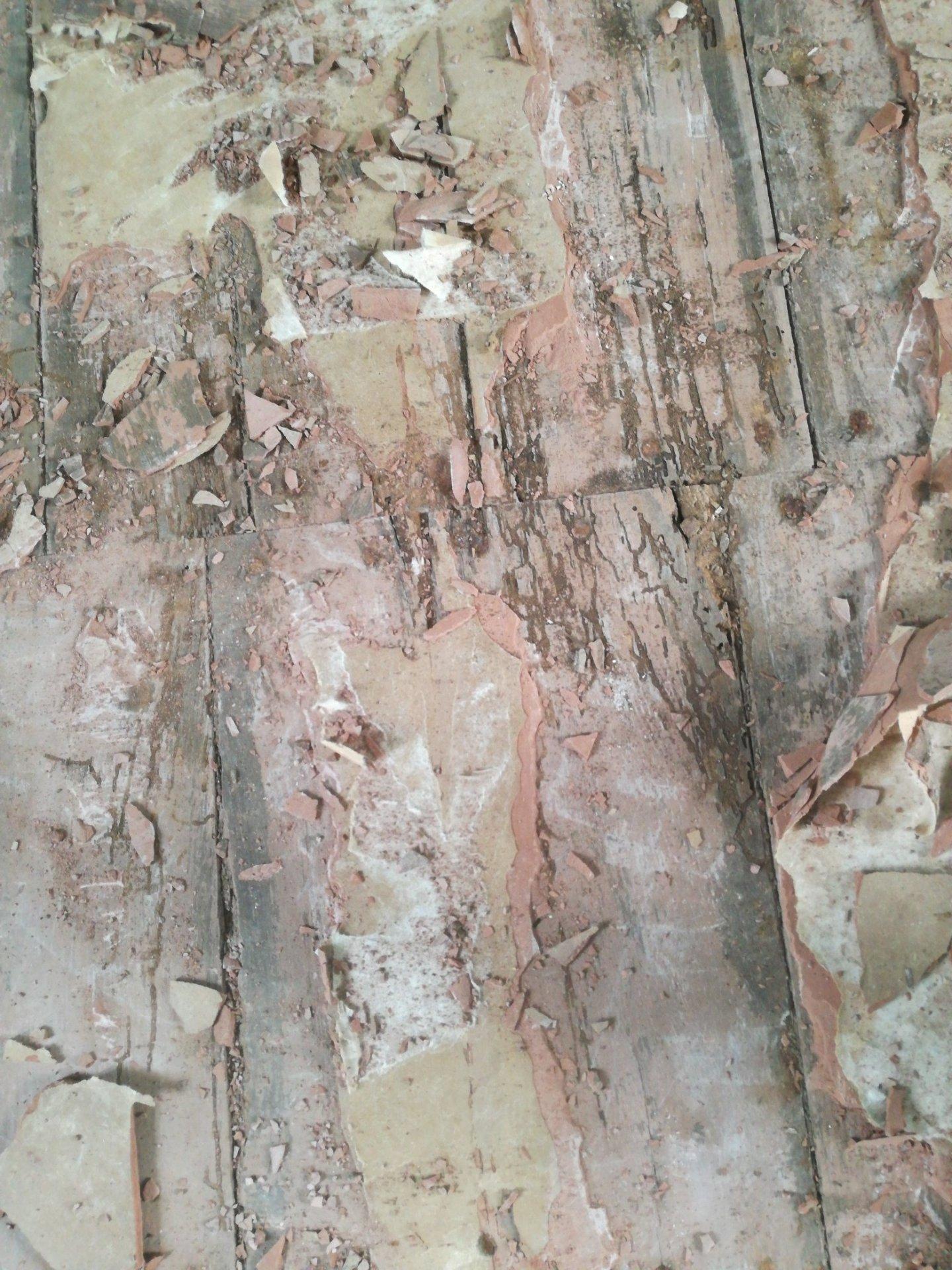 Beliebt Über 200 Jahre alter Dielenboden - erhalten, OSB-Platten drauf UK26
