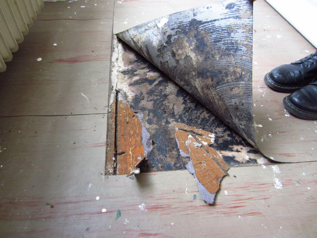 Bekannt PVC mit schwarzem Kleber und Pappe von Dielen entfernen - wie? IA07