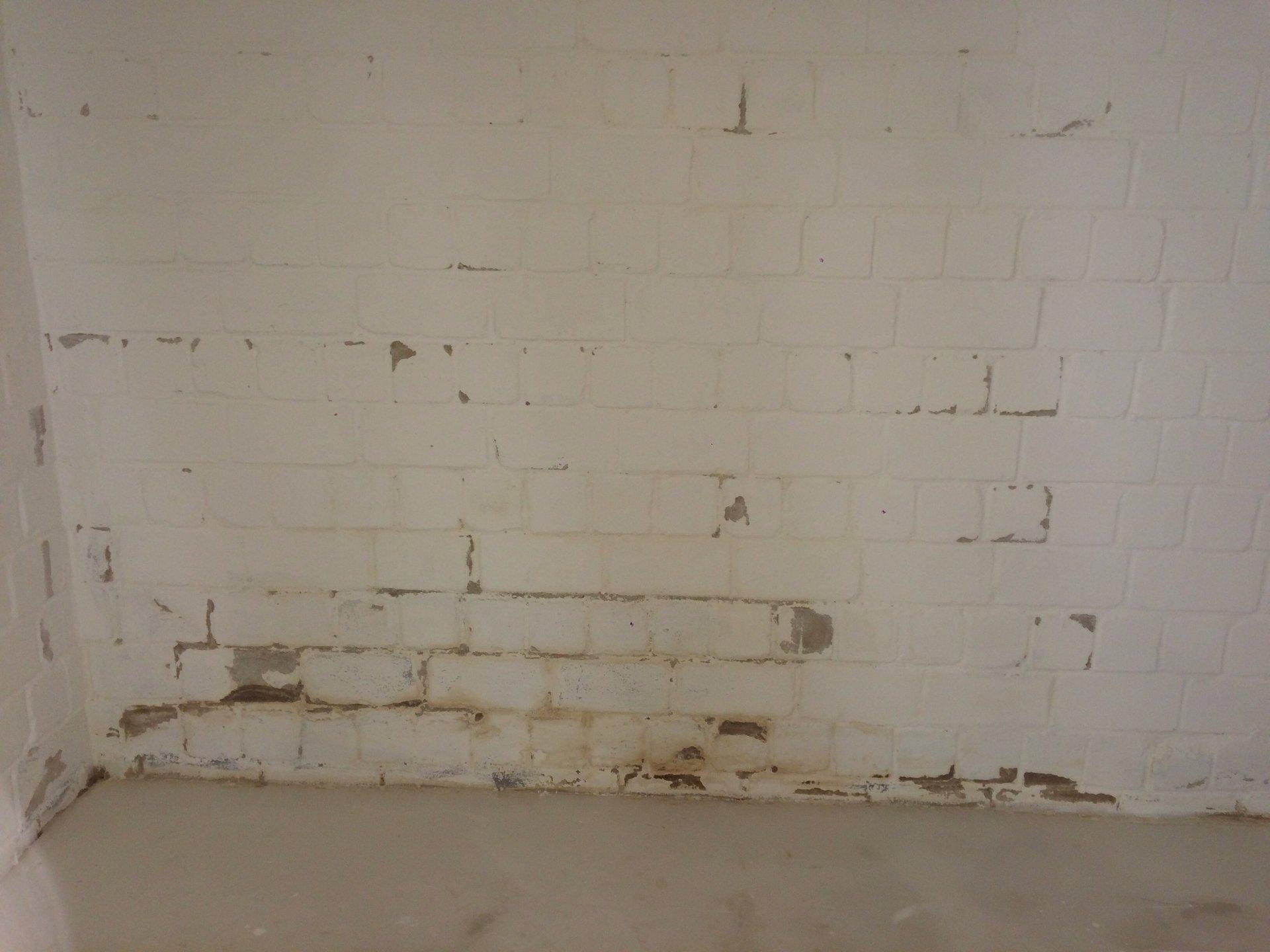 Top Braune Stellen an Kellerwand - Farbe bröckelt ab UV89