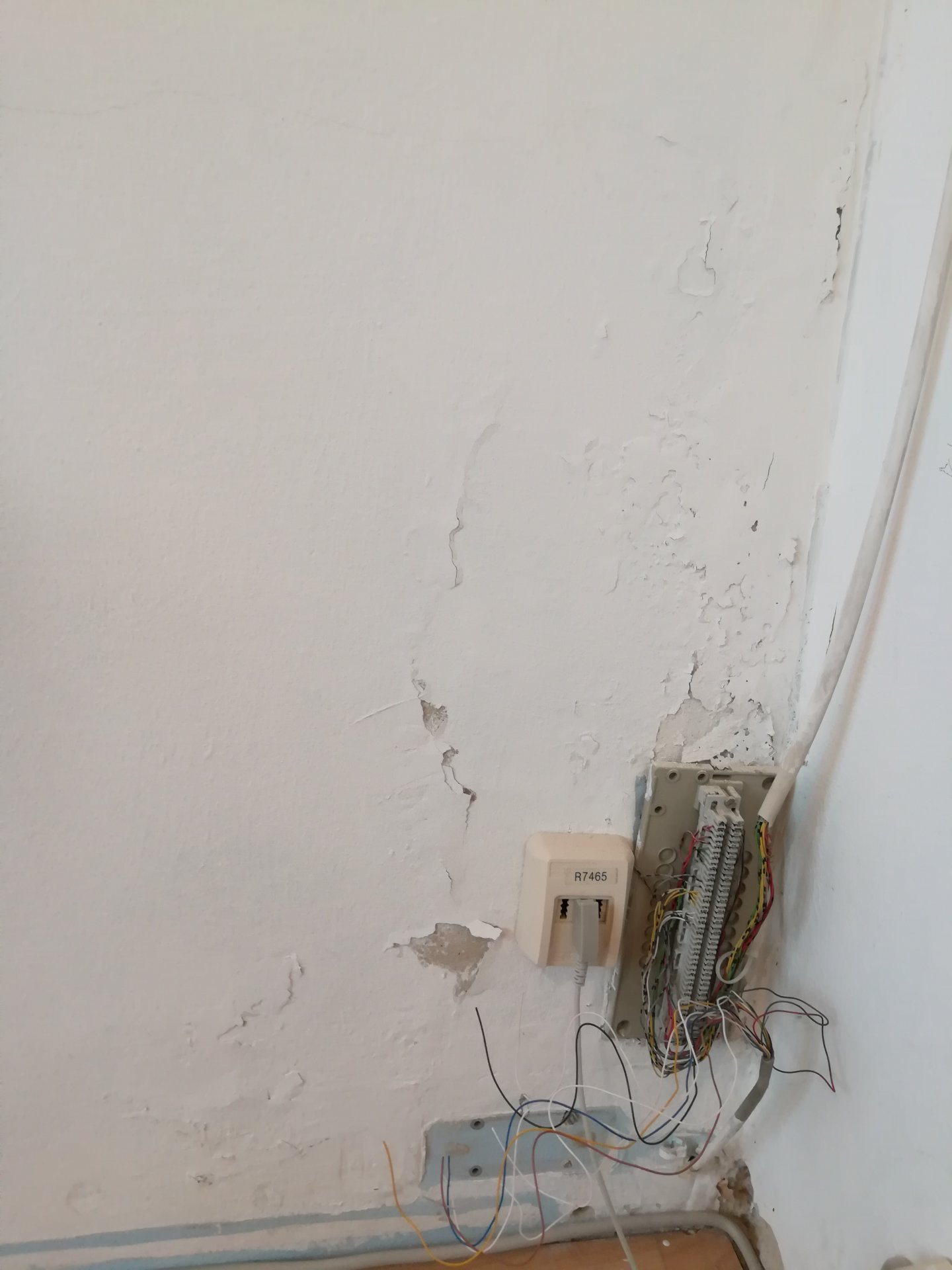 Was tun mit Wand nach Wasserschaden
