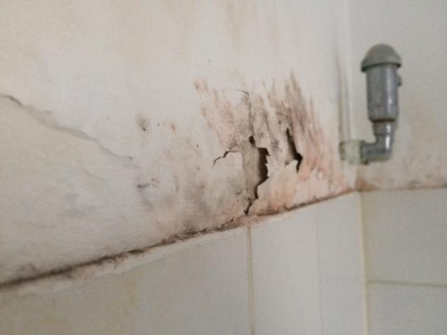 feuchte rigips wand im spritzbereich der dusche streichen. Black Bedroom Furniture Sets. Home Design Ideas