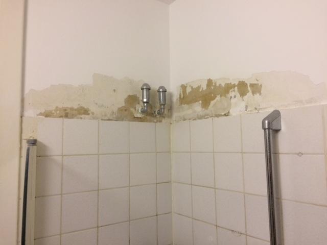 Feuchte Rigips-Wand im Spritzbereich der Dusche streichen