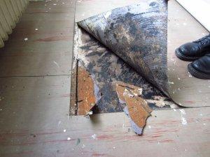 pvc mit schwarzem kleber und pappe von dielen entfernen wie. Black Bedroom Furniture Sets. Home Design Ideas